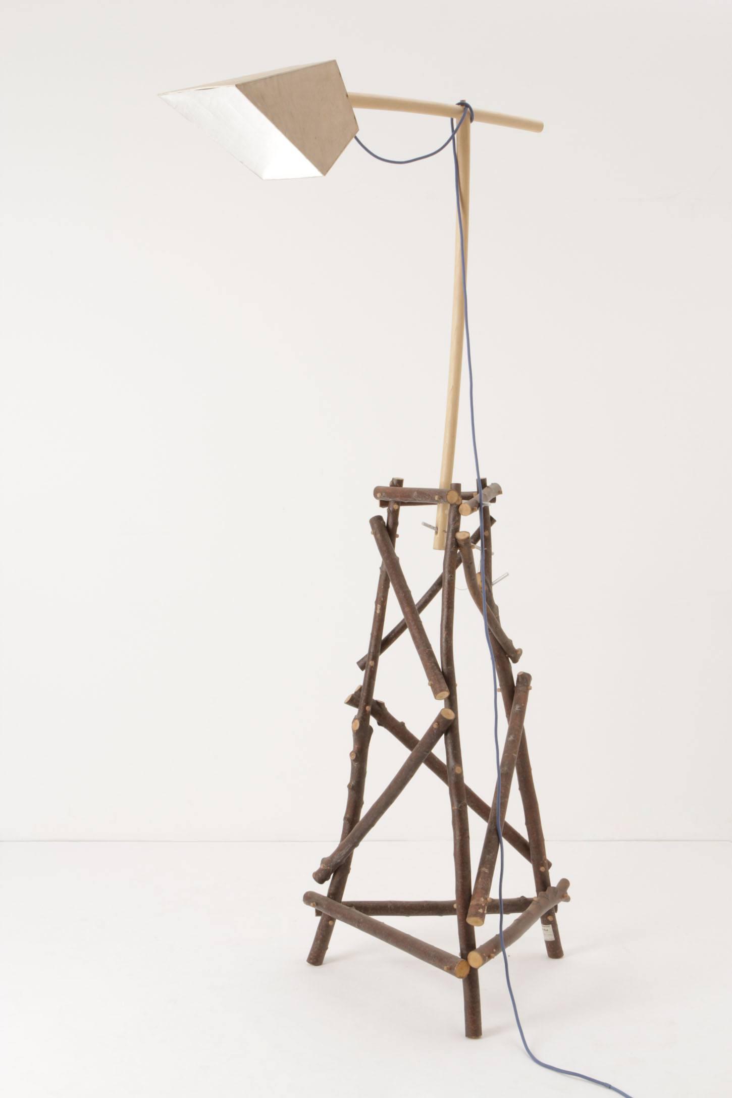 Wild Wood Floor Lamp - anth...