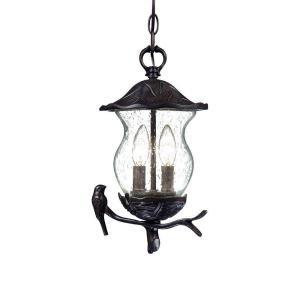 Acclaim Lighting Avian Collection Hanging Outdoor 2-Light Black Coral Light Fixture-7566BC/SD at The Home Depot
