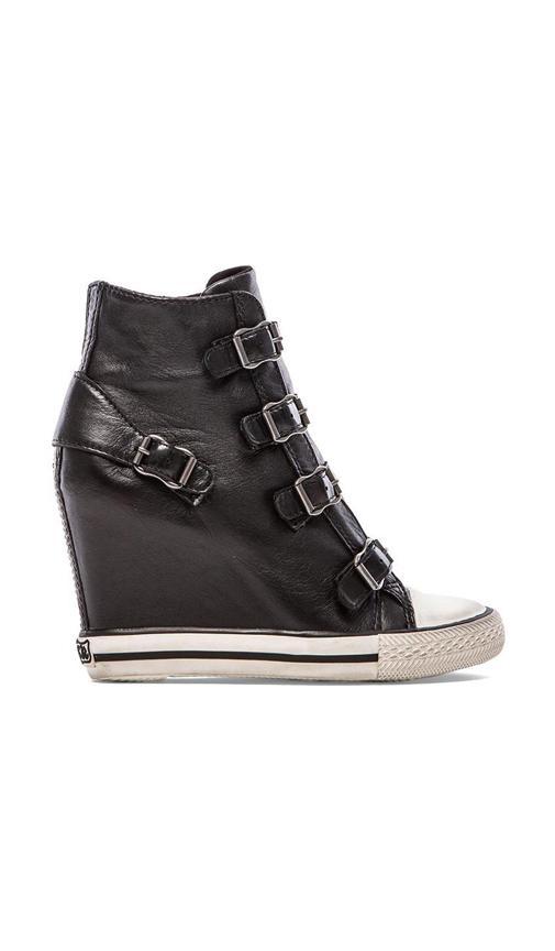 Ash United Sneaker Wedge in...