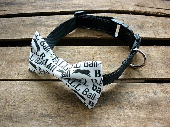 Dog Collar With Bowtie. Dog...