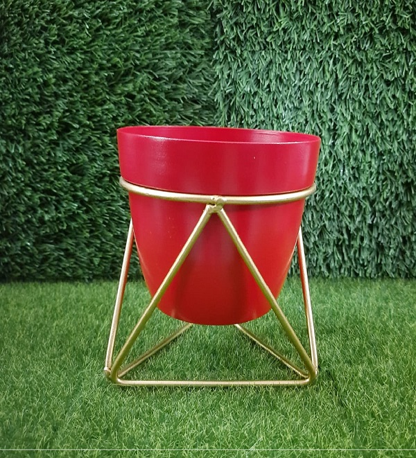 Modern Planter with gold st...