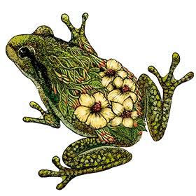 Flower Frog Tattoo Tattapic Shoplinkz Animal Tattoos Tattapic